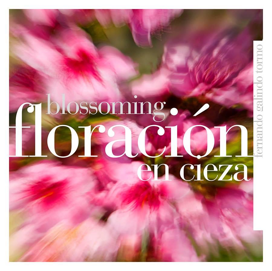 Libro La Florción en Cieza de Fernando Galindo