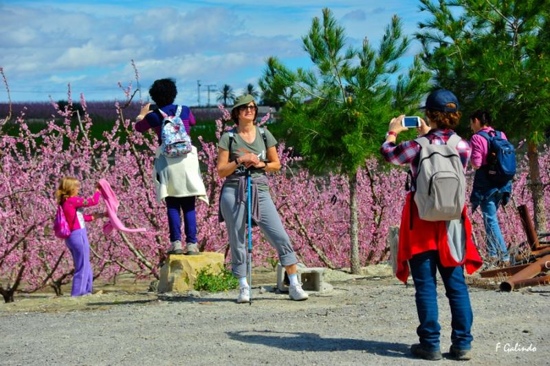 Turistas en la floración de Cieza