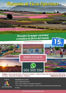 Floracion experience